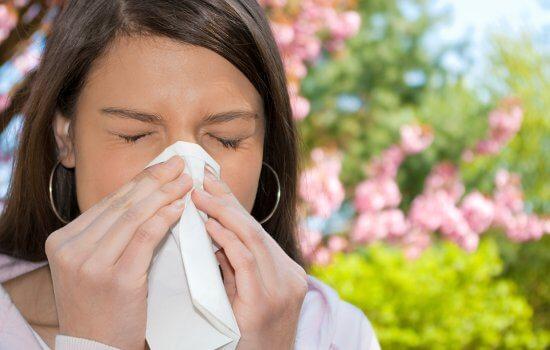 Летом аллергический насморк обостряется из-за сенной лихорадки