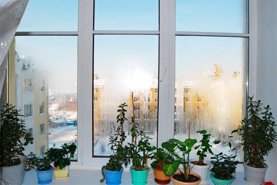 Запотевшие окна