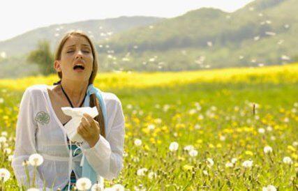 Пыльца растений является сильным аллергеном