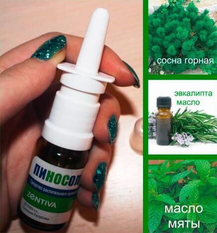 Эфирные масла, которые входят в состав Пиносола