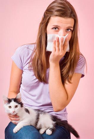 Аллерген - домашние животные