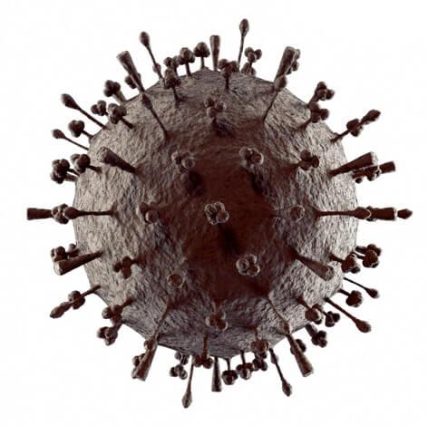 Вирусная частица гриппа