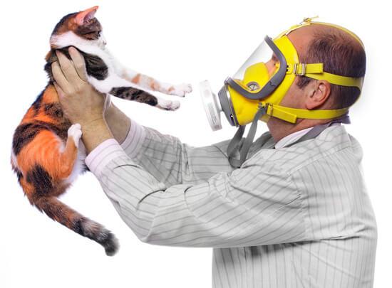 Мужчина в противогазе держит кошку
