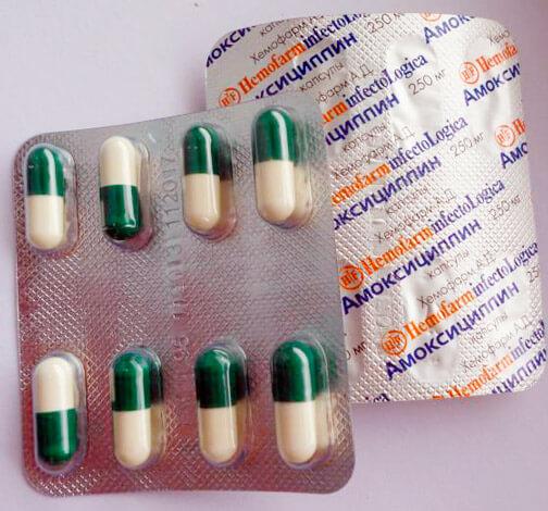 можно после азитромицина пить амоксициллин