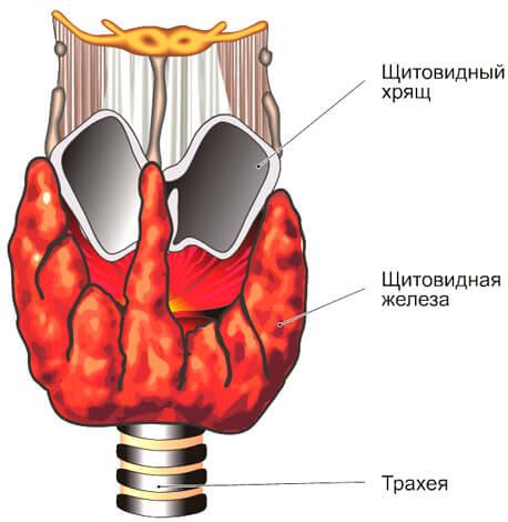 Насморк, вызванный изменением гормонального баланса, диагностируется только в медицинских учреждениях.