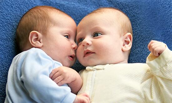 Молочные братья