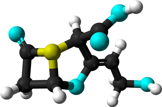 При попадании в ткани действующих веществ Аугментина сначала клавулановая кислота расчищает путь к очагу инфекции для амоксициллина, после чего антибиотик начинает действовать на бактерий.