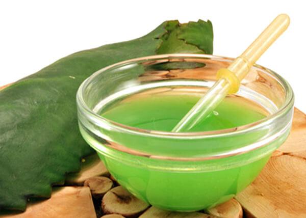 Если при насморке сок каланхоэ хотя бы способен помочь ребенку отчихаться, то при ангине от него вообще не будет никакой пользы.