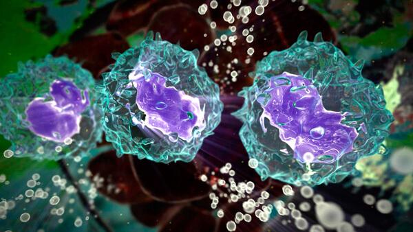 Макрофаги - клетки, уничтожающие вирусные частицы при встрече.