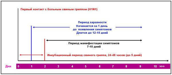 На схеме хорошо видно, что период заразности больного с гриппом начинается раньше, чем заканчивается инкубационный период.