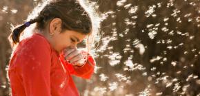 Причины развития аллергического насморка