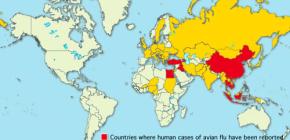 Птичий грипп в 2016 году: эпидемиологическая ситуация в мире, а также в Америке, Казахстане, Беларуси и Украине