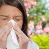 Подробно об аллергическом насморке при беременности