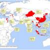 Птичий грипп в России: подробно про ситуацию в стране, а также в Москве, Санкт-Петербурге, в Крыму и других крупных городах и регионах