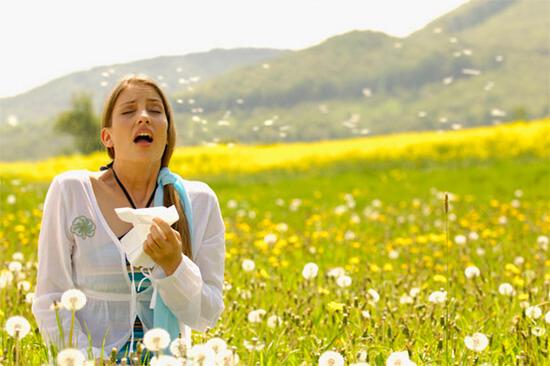 Аллергический насморк в период цветения растений