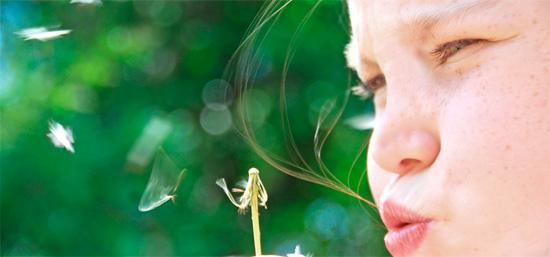 Жизнь без аллергического насморка