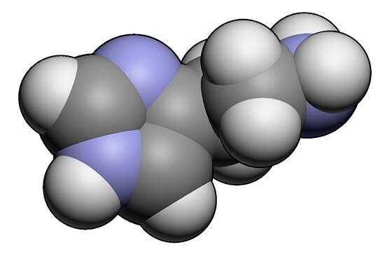 Гистамин - медиатор воспаления. После раздражения слизистой именно он обеспечивает появление всех неприятных симптомов
