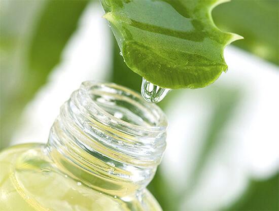 Многие пользуются соком алоэ как средством от заложенности носа, не зная, что практически никакого эффекта это не дает.