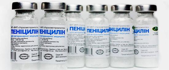 Флаконы с пенициллином