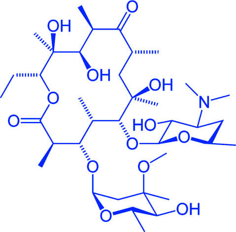 Именно неустойчивость эритромицина в желудке человека заставила ученых разрабатывать полусинтетические макролиды, которые не расщепляются кислотами.