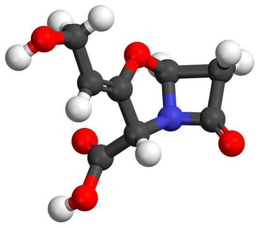 Клавулановая кислота способствует разрушению клеточных стенок бактерий, вызывающих ангину, и обеспечивает эффективность амоксициллина.