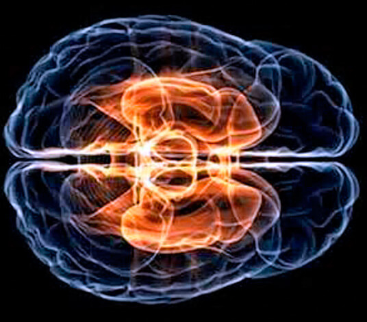 Стрептококк при распространении по организму способен поражать сердце, почки, головной мозг, суставы и другие органы и ткани.