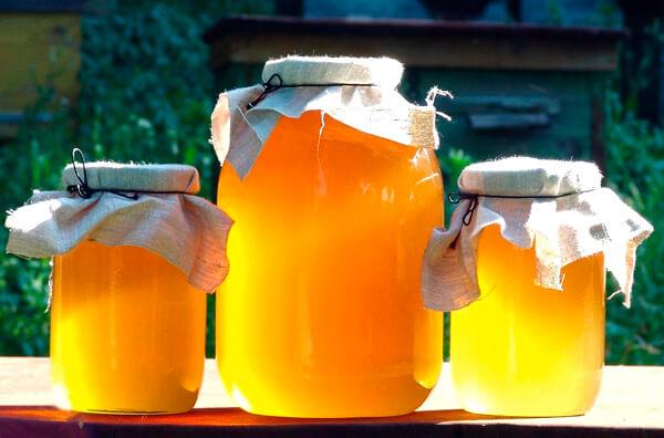 D народной медицине мед считается едва ли не панацеей от всех болезней.
