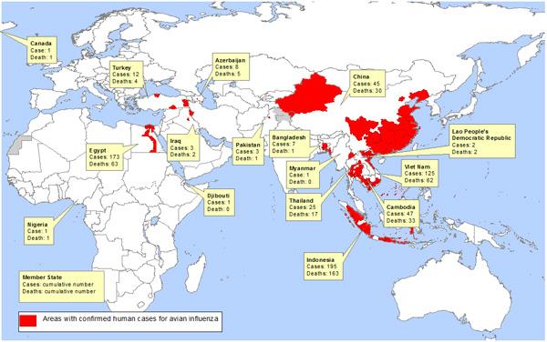 На карте показаны области в мире, в которых были зарегистрированы случаи заболевания людей птичьим гриппом по данным ВОЗ. В России таких случаев не зарегистрировано.